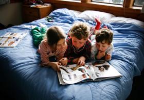 読めば読むほど読める脳になる、ディスレクシアの改善