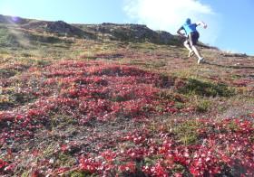 山登り、秋色!