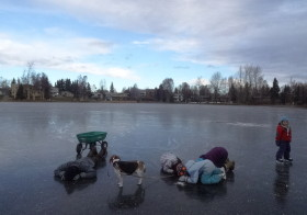 散歩、氷の上と下と