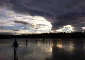 写真で見る初冬の日々、最近の五人それぞれ