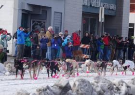 アラスカ晩冬の祭「ファーランディー」2015